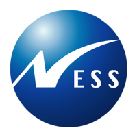 Ness - Web Systems Development